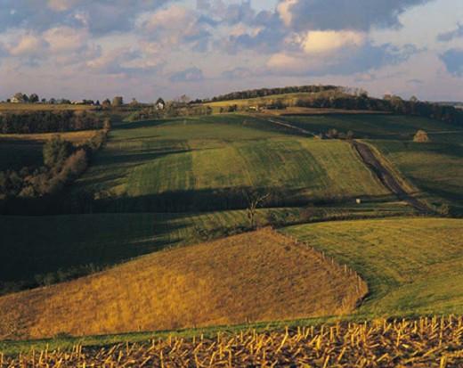 Stock Photo: 1491R-1014348 Landscape near New Germany, Garrett County, Maryland, USA