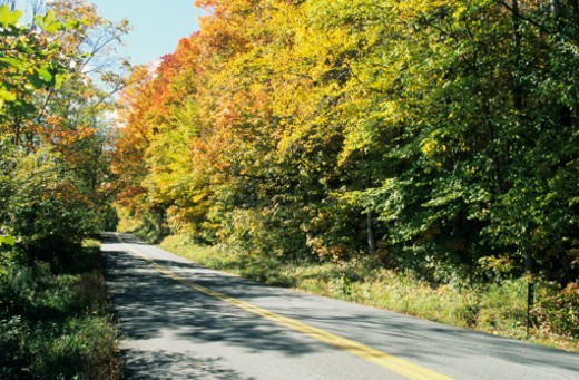 Vermont country lane in Fall color, VT, USA : Stock Photo