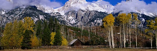 Stock Photo: 1491R-1026619 Grand Teton National Park