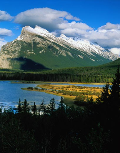 Vermilion Lakes in Banff National Park : Stock Photo