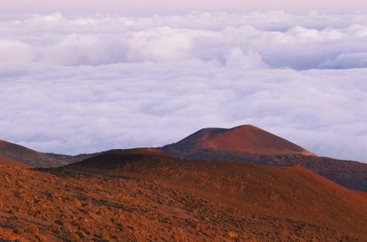 Stock Photo: 1491R-1051429 Mauna Loa