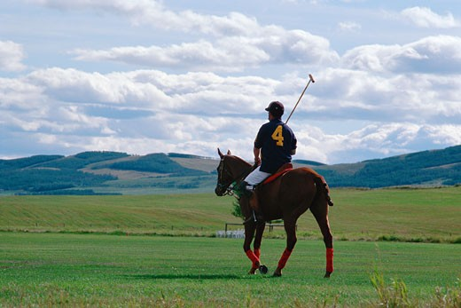 Stock Photo: 1491R-1061547 Polo player on horse with hills in distance