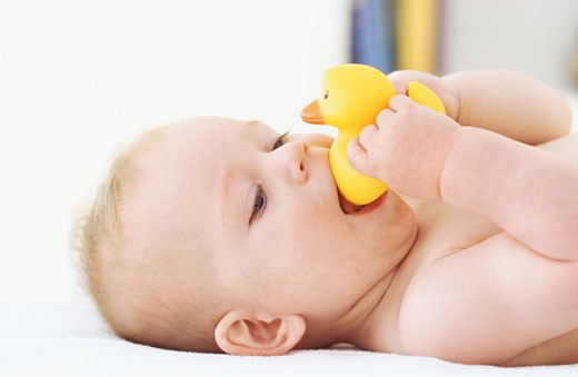 Side view of baby boy holding rubber duck (6-12 months) : Stock Photo
