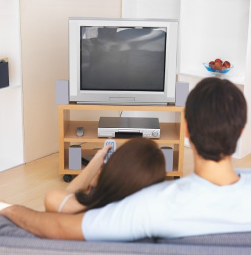 Rear view of young couple watching television : Stock Photo