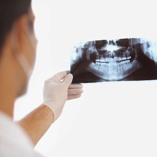 Stock Photo: 1491R-1070706 Rear view of dentist wearing surgical mask and gloves and examining x-ray