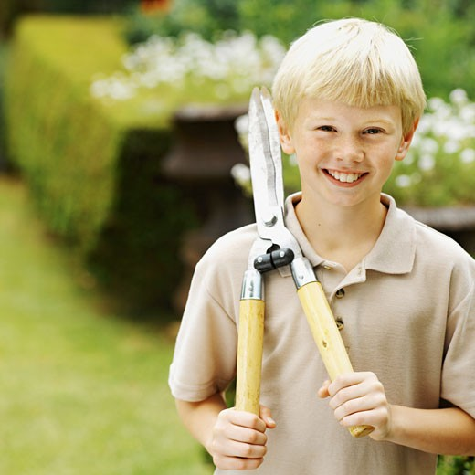 Front view of boy cutting hedge with hedge clippers (10-11) : Stock Photo