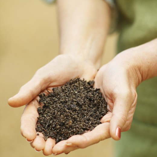 Close-up mid section of woman holding soil : Stock Photo