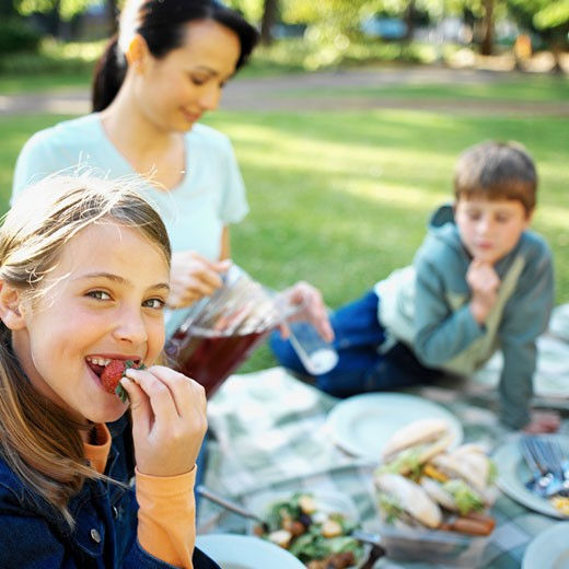 Stock Photo: 1491R-1074244 Family on a picnic