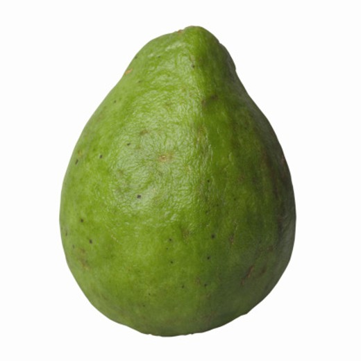 Close-up of a green guava : Stock Photo