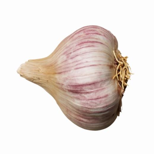 Close-up of a clove garlic : Stock Photo