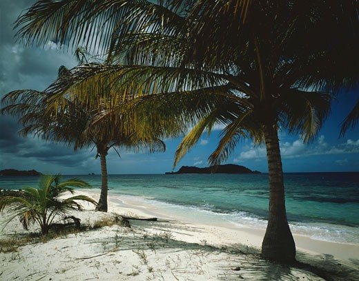 Stock Photo: 1491R-1077315 Tropical Beach