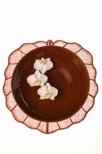 Laquer bowl with three orchids, view from above : Stock Photo