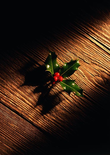 Stock Photo: 1491R-1110683 close-up of a sprig of holly lying on a wooden surface