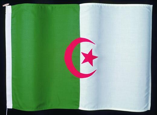 flag of Algeria : Stock Photo