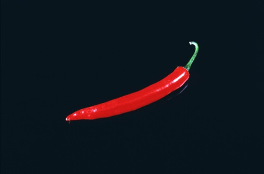 Stock Photo: 1491R-1136716 pepper