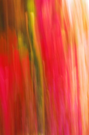 Stock Photo: 1491R-1140476 techno blur