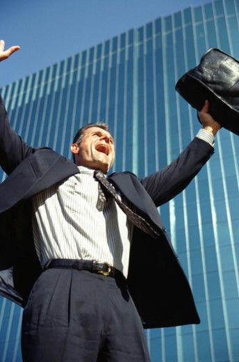 Stock Photo: 1491R-1150216 Businessman with arms up, low angle view