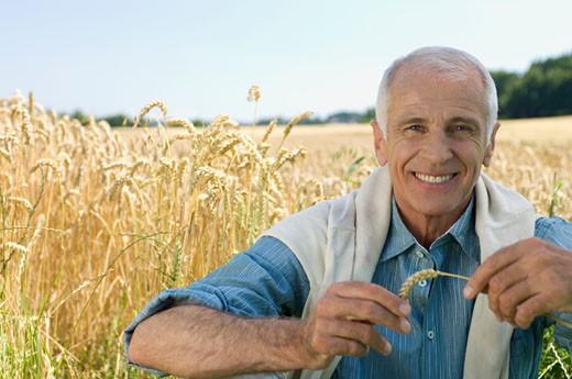 Stock Photo: 1491R-1158012 Portrait of senior man in wheat field, Swabian Alb, Baden-Wurttemberg, Germany