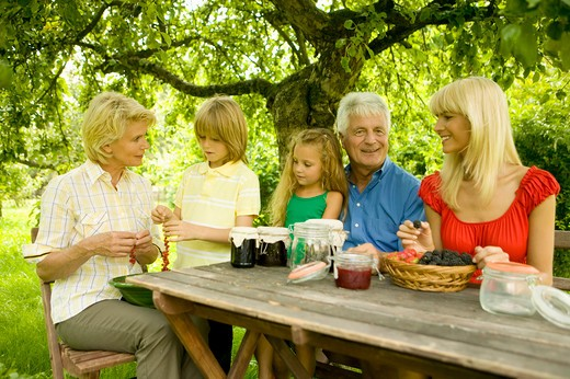 Stock Photo: 1491R-1160891 Family making berry preserves