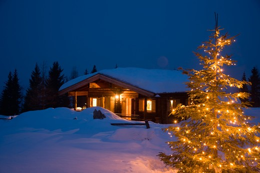 Stock Photo: 1491R-1164478 Illuminated Christmas tree outside log cabin at night