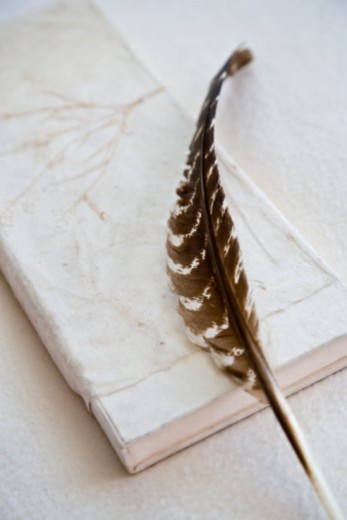 Books feather an stones : Stock Photo
