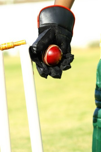 Wicket Keeper hitting the stumps : Stock Photo
