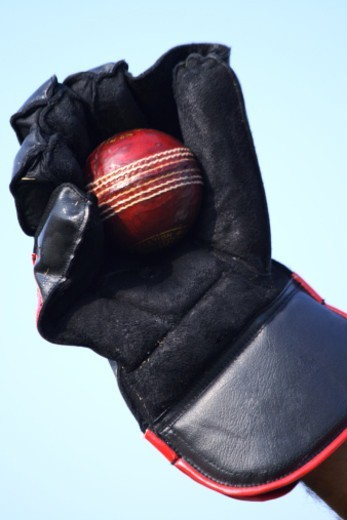 Stock Photo: 1491R-1182669 Close up of a wicket keeper's glove and ball