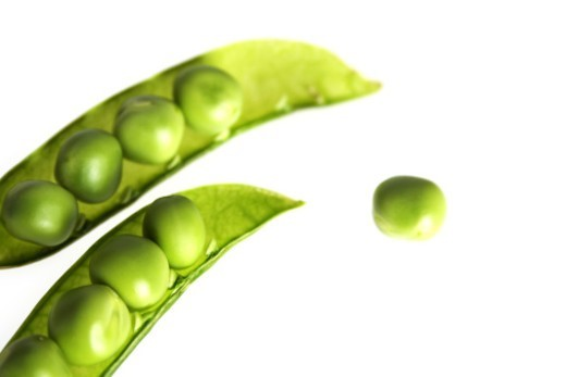 Pea pods , studio shot : Stock Photo
