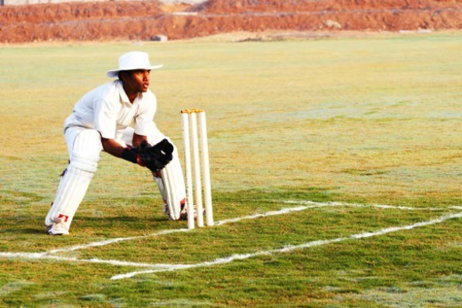 Wicket keeper behind the stumps : Stock Photo