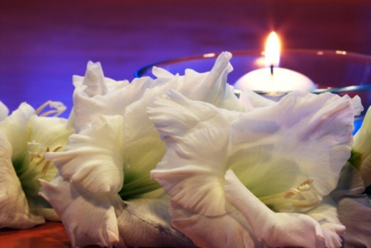 Stock Photo: 1491R-1190807 Flowers in front of a candle