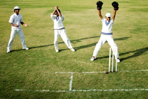 Cricket players on the field : Stock Photo