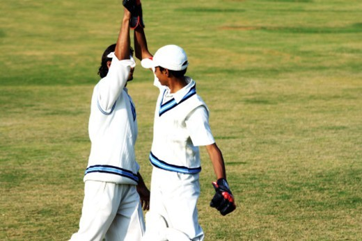 Wicketkeeper giving hi-five to a fielder : Stock Photo