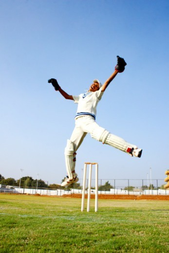 Wicket keeper jumping in jubilation : Stock Photo