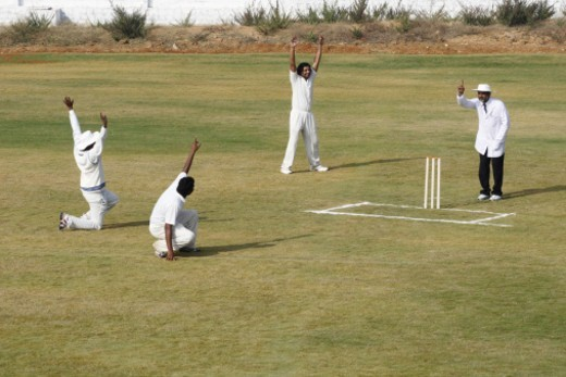 Stock Photo: 1491R-1195757 A cricket match in progress
