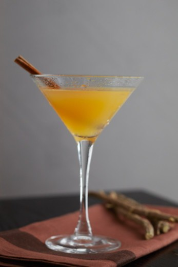 Stock Photo: 1491R-1200309 Alcohol, Cinnamon Stick, Apple Juice, Ginger, Apple, Apple Cider, Vodka, Martini, Spice, Cinnamon, Food, Food And Drink, Beverage, Alcohol, Cocktail,