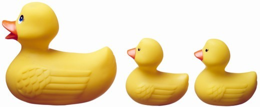 Isolated studio shot cut out on white background of rubber ducks : Stock Photo
