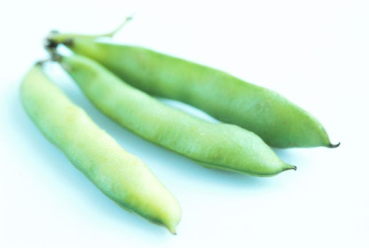 Stock Photo: 1491R-135061 close-up of an array of green peas joined at the stem