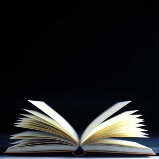 Stock Photo: 1491R-137266 close-up of an open book with pages flying