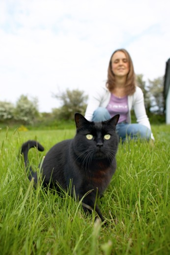 Close up of a cat in the foreground and young woman in the background : Stock Photo