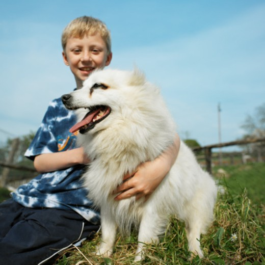 Stock Photo: 1491R-229076 low angle portrait of a boy (8-10) holding a dog