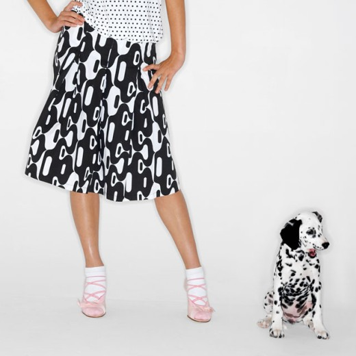 low section view of a woman standing next to her Dalmatian puppy : Stock Photo