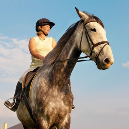 Stock Photo: 1491R-229116 low angle view of a woman riding a horse