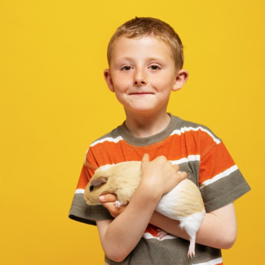 portrait of a boy (7-8) holding a gerbil : Stock Photo