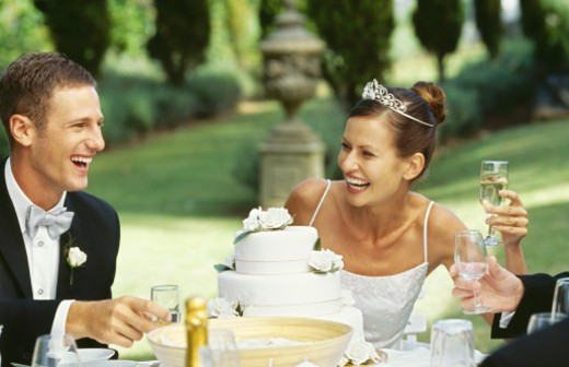 Stock Photo: 1491R-239095 bride and groom at a wedding reception