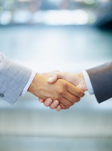 two business executives shaking hands : Stock Photo