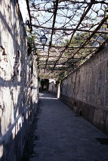 Pathway under a canopy, Positano, Amalfi Coast, Campania, Italy : Stock Photo