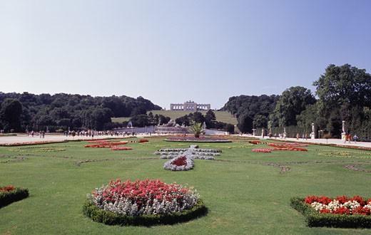 Stock Photo: 1495-600 Plants in a garden, Schonbrunn Palace, Vienna, Austria