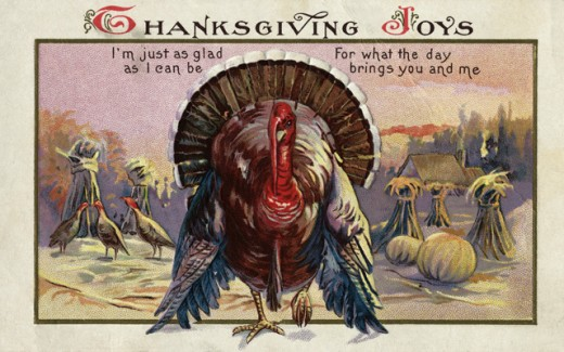Stock Photo: 1501-135 Thanksgiving Joys