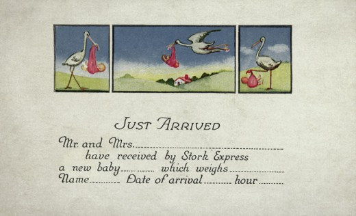 """""""Just Arrived"""" Birth Announcement Postcard Private Collection : Stock Photo"""