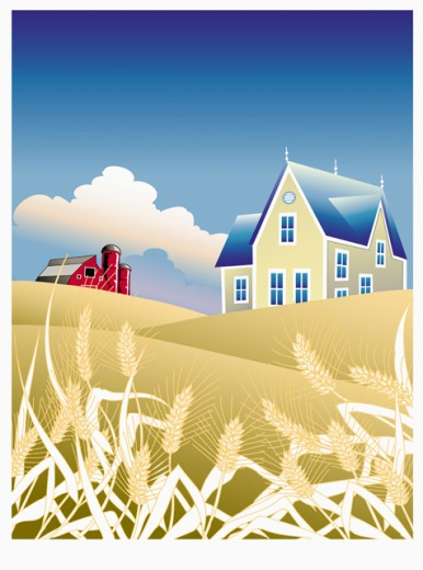 Fancy Farm